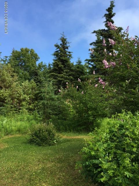 204 N Forest Drive, Kenai, AK 99611 (MLS #18-12394) :: Core Real Estate Group