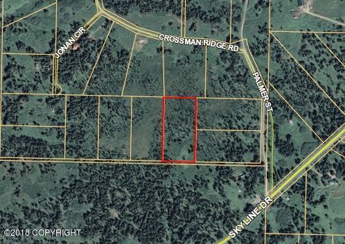 000 Donald Avenue, Homer, AK 99603 (MLS #18-12598) :: Real Estate Brokers of Alaska