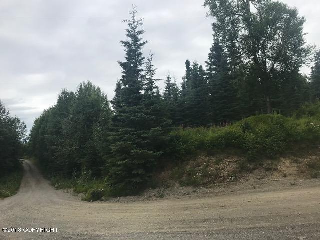 L5 B3 Commerce Avenue, Nikiski/North Kenai, AK 99611 (MLS #18-13375) :: Channer Realty Group