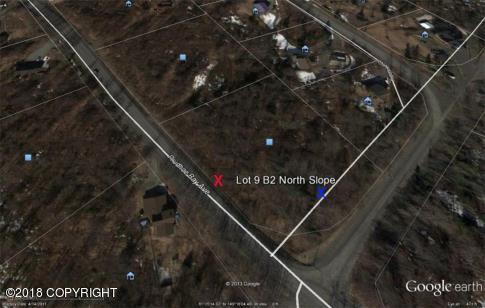 L9 B2 Prudhoe Bay Avenue - Photo 1