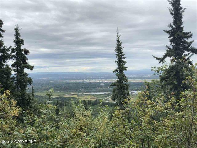 1454 Chena Ridge Road, Fairbanks, AK 99709 (MLS #18-14572) :: Team Dimmick