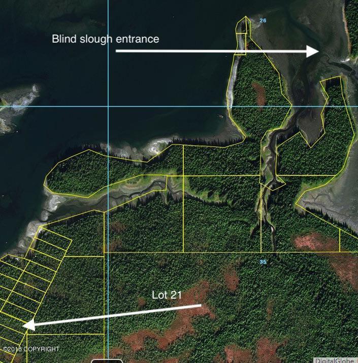 L21 Wrangell Narrows - Photo 1