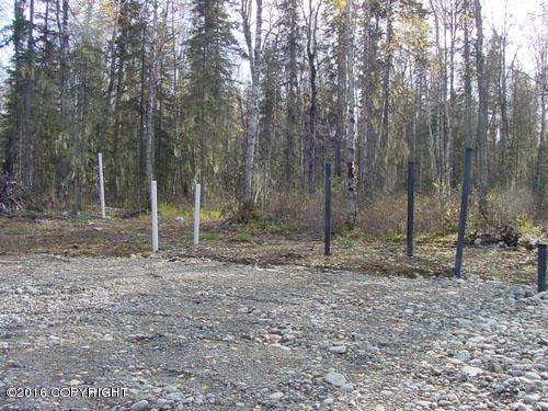 L1 B3 E Wilder Circle, Talkeetna, AK 99676 (MLS #18-1465) :: RMG Real Estate Network | Keller Williams Realty Alaska Group