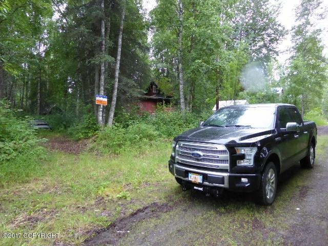 13572 E Second Street, Talkeetna, AK 99676 (MLS #18-1466) :: RMG Real Estate Network | Keller Williams Realty Alaska Group