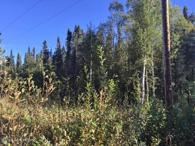 16612 E Ed's Road, Talkeetna, AK 99676 (MLS #18-1468) :: RMG Real Estate Network | Keller Williams Realty Alaska Group