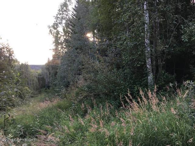 1071 John Kalinas Road, Fairbanks, AK 99712 (MLS #18-14849) :: Team Dimmick