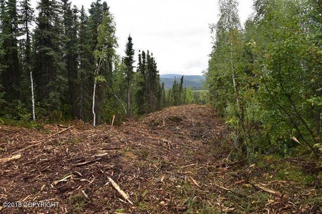 L5 Himilaya Road, Fairbanks, AK 99712 (MLS #18-15015) :: Core Real Estate Group