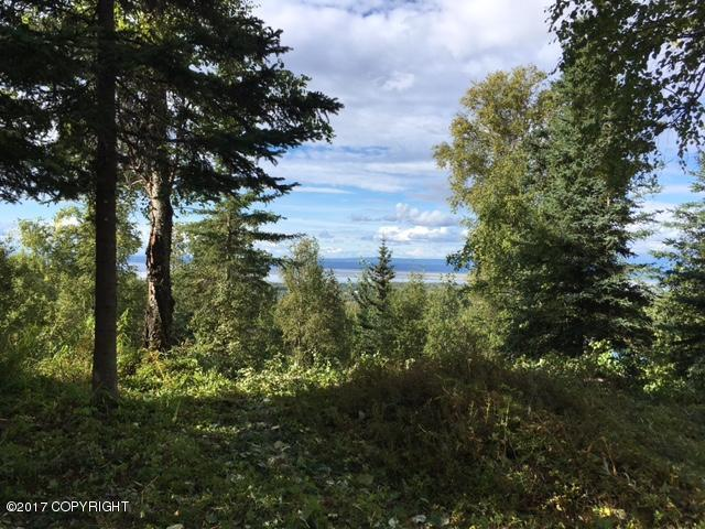 000 Mountain Road, Chugiak, AK 99567 (MLS #18-15038) :: Northern Edge Real Estate, LLC
