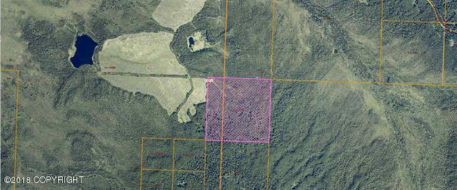 B13 Standard Creek Road, Fairbanks, AK 99709 (MLS #18-15159) :: Northern Edge Real Estate, LLC