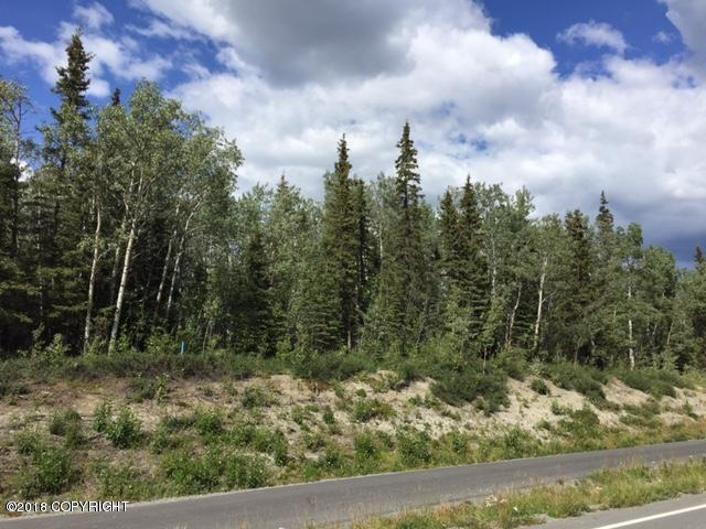 Mi 5.1 Edgerton Highway, Copper Center, AK 99573 (MLS #18-15661) :: Northern Edge Real Estate, LLC