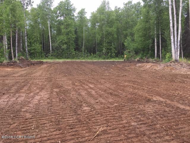 13821 N Pyrite Avenue, Willow, AK 99688 (MLS #18-16767) :: RMG Real Estate Network | Keller Williams Realty Alaska Group