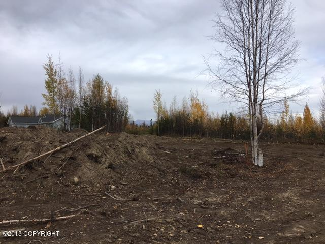 695 N Lilly Drive, Big Lake, AK 99652 (MLS #18-16887) :: Core Real Estate Group