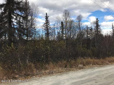 12937 W Snowberry Road, Willow, AK 99688 (MLS #18-17215) :: RMG Real Estate Network | Keller Williams Realty Alaska Group
