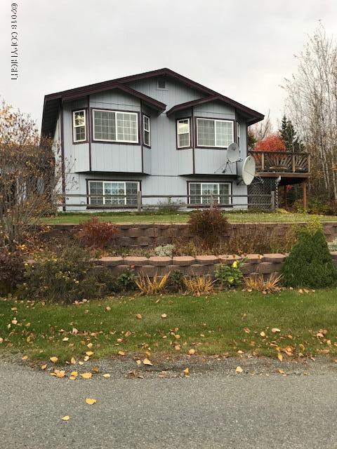 9931 E Tern Drive, Palmer, AK 99645 (MLS #18-17297) :: Core Real Estate Group