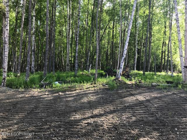 14035 W Sandy Hills Circle, Wasilla, AK 99654 (MLS #18-17429) :: Core Real Estate Group