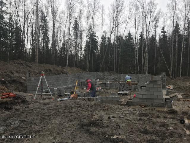 17790 S Birchwood Loop, Chugiak, AK 99567 (MLS #18-17756) :: Channer Realty Group