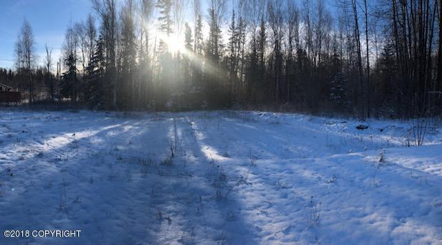 1115 Sun School Circle, Wasilla, AK 99654 (MLS #18-18284) :: RMG Real Estate Network | Keller Williams Realty Alaska Group
