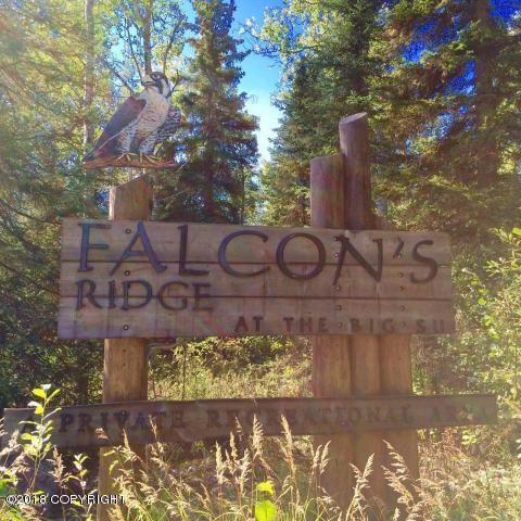46770 S Merlin Drive, Willow, AK 99688 (MLS #18-185) :: Real Estate eXchange