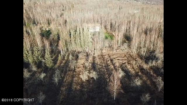 795 Spudwood Road, Fairbanks, AK 99712 (MLS #18-18536) :: Core Real Estate Group