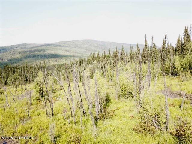 Nhn Chena Hot Springs Road, Fairbanks, AK 99712 (MLS #18-18644) :: Core Real Estate Group