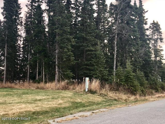406 Eadies Way, Kenai, AK 99611 (MLS #18-18703) :: RMG Real Estate Network | Keller Williams Realty Alaska Group