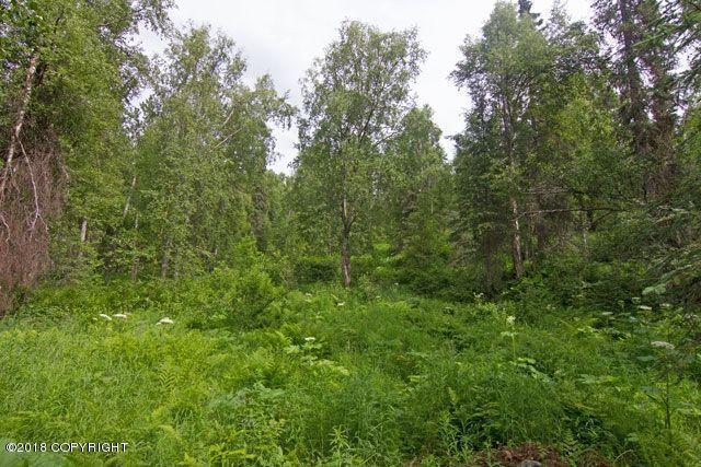 21001 E Rampart Loop, Talkeetna, AK 99676 (MLS #18-18787) :: RMG Real Estate Network | Keller Williams Realty Alaska Group