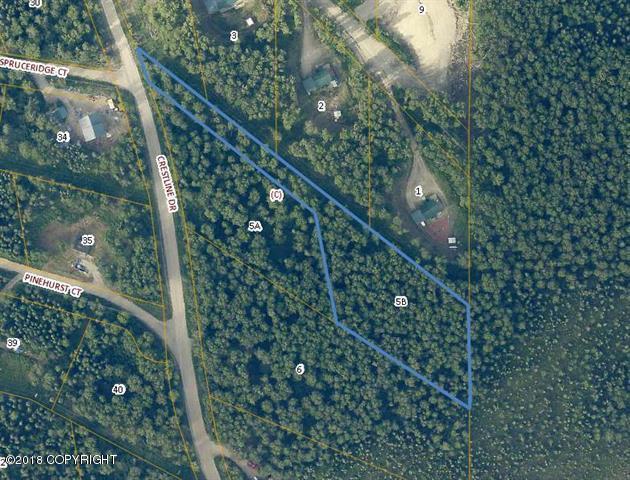 L5B BC Crestline Drive, Fairbanks, AK 99712 (MLS #18-19535) :: Team Dimmick