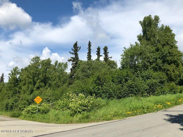 L4 B1 Ptarmigan Roost, Anchorage, AK 99516 (MLS #18-19574) :: The Huntley Owen Team