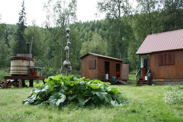 Tr A-B No Road, Talkeetna, AK 99676 (MLS #18-19789) :: Core Real Estate Group