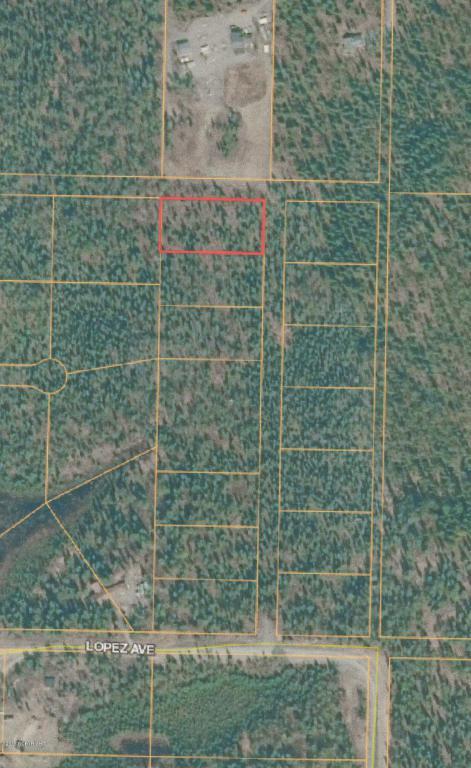 L1 B2 Charles Street, Soldotna, AK 99669 (MLS #18-2345) :: Northern Edge Real Estate, LLC