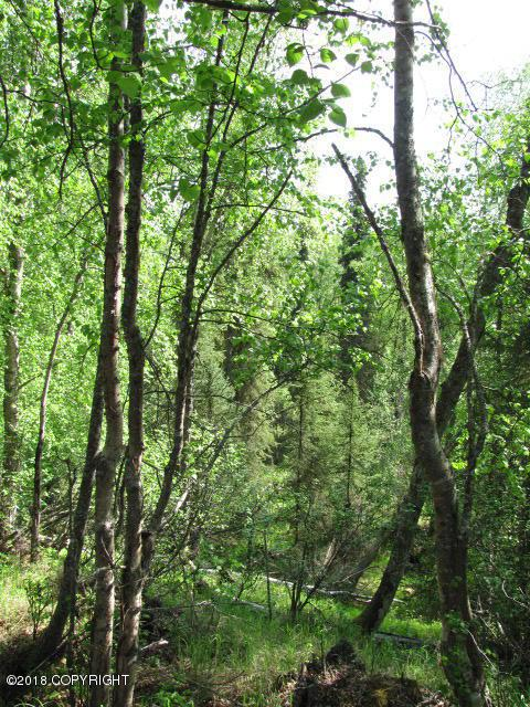 Lot 2 W Blue Goose Road, Wasilla, AK 99654 (MLS #18-242) :: RMG Real Estate Network | Keller Williams Realty Alaska Group