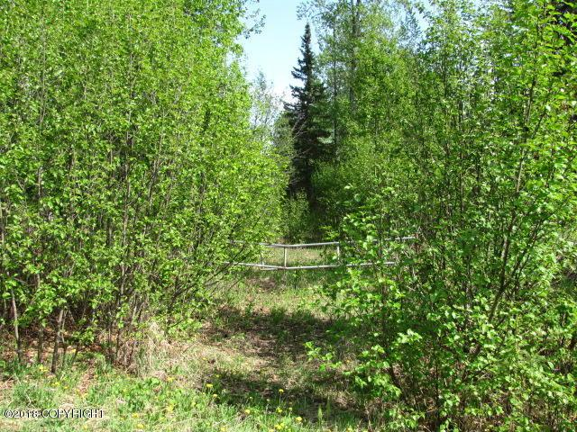 Lot 3 W Blue Goose Road, Wasilla, AK 99654 (MLS #18-244) :: RMG Real Estate Network | Keller Williams Realty Alaska Group