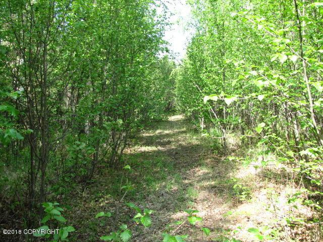 Lot 4 W Blue Goose Road, Wasilla, AK 99654 (MLS #18-246) :: RMG Real Estate Network | Keller Williams Realty Alaska Group