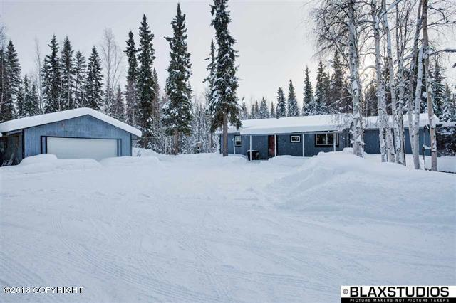 5709 Armitage Avenue, Salcha, AK 99714 (MLS #18-2846) :: Channer Realty Group