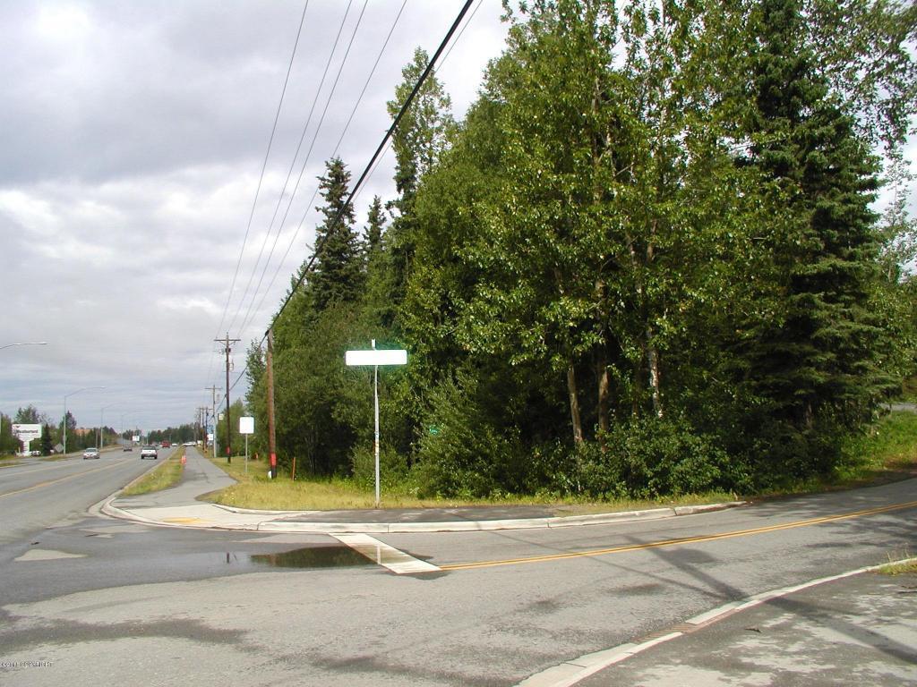 12875 Old Seward Highway - Photo 1