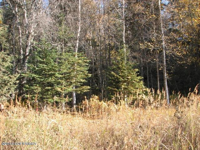 50990 Woodpecker Lane - Photo 1