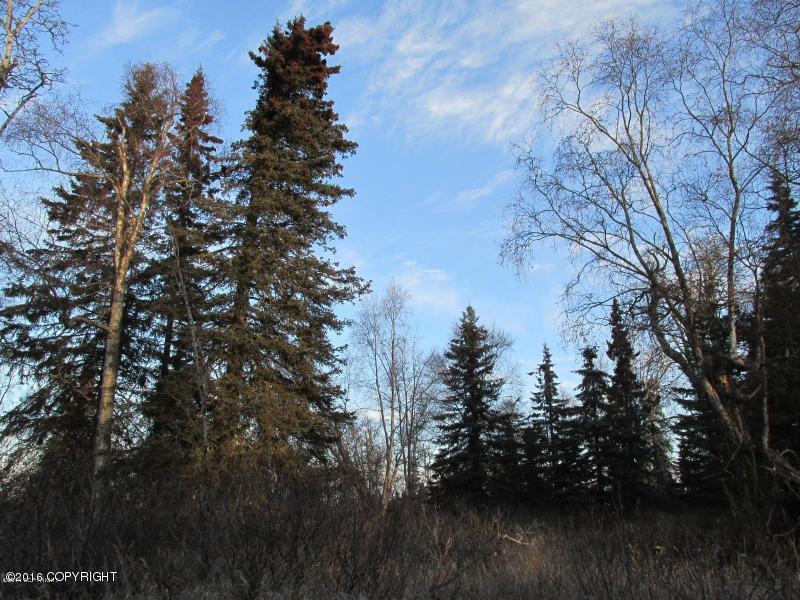 L3-9 Woodpecker Lane - Photo 1