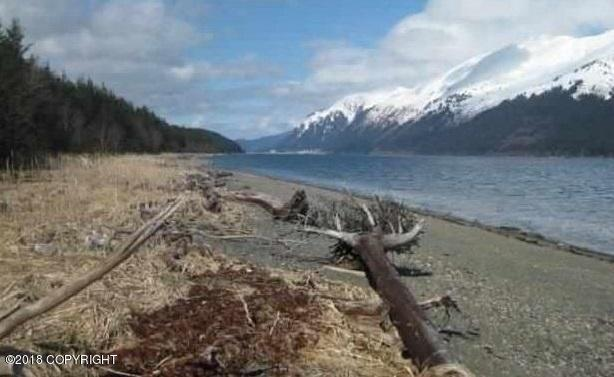 USS 708 No Road, Douglas, AK 99824 (MLS #18-4304) :: Team Dimmick
