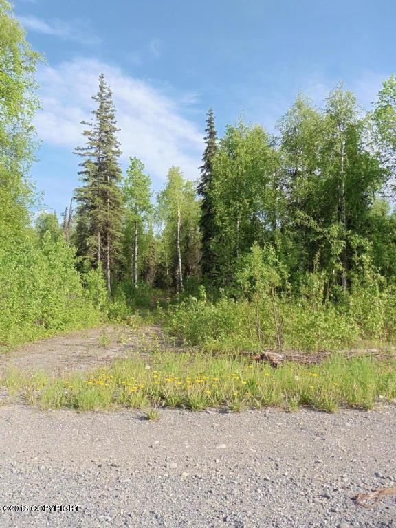68427 S Parks Highway, Willow, AK 99688 (MLS #18-5125) :: Channer Realty Group