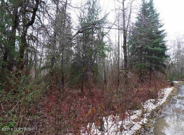 L7 Pipeline Drive, Haines, AK 99827 (MLS #18-5304) :: Northern Edge Real Estate, LLC
