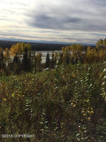 L19 B2 Anella Avenue, Fairbanks, AK 99709 (MLS #18-5417) :: Team Dimmick