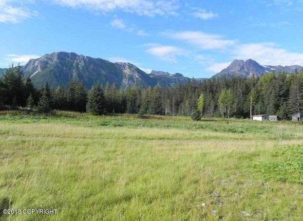 L2 No Road, Haines, AK 99827 (MLS #18-5420) :: Northern Edge Real Estate, LLC