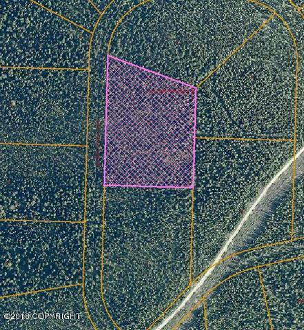 L2 B6 Hayes Creek Road, Fairbanks, AK 99712 (MLS #18-6335) :: Team Dimmick