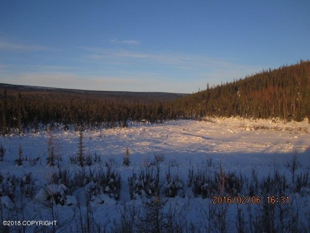 L2308-2309 Elliott Highway, Remote, AK 99000 (MLS #18-6935) :: Channer Realty Group