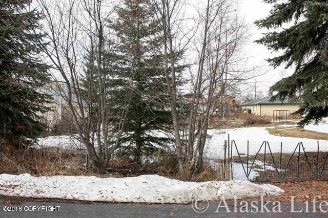 L6 B19 W 6th Avenue, North Pole, AK 99705 (MLS #18-6944) :: Team Dimmick
