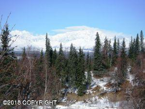 A014 Denali View Drive, Remote, AK 99000 (MLS #18-7147) :: Core Real Estate Group