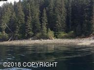 L8, Bl B Excursion Inlet South, Haines, AK 99827 (MLS #18-7615) :: Team Dimmick