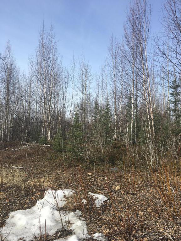 878 S Old Toby Road, Wasilla, AK 99654 (MLS #18-8237) :: Team Dimmick