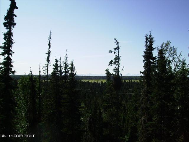 25105 Arctic Fox Road, Kasilof, AK 99610 (MLS #18-8278) :: Team Dimmick