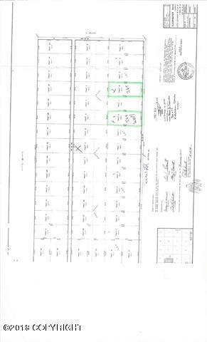 LK Quail Road, Delta Junction, AK 99737 (MLS #18-8748) :: Synergy Home Team